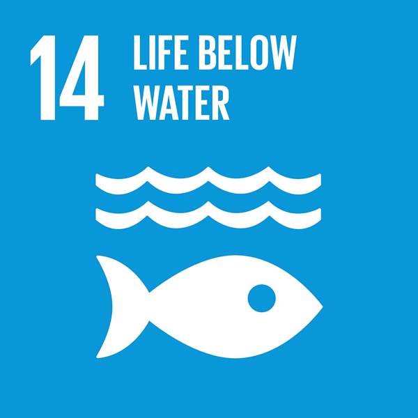 Sustainable Development Goal 14: Life Below Water